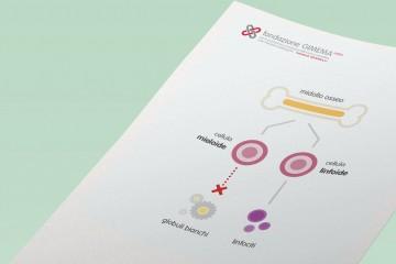 Leucemia Mieloide Acuta – Fondazione GIMEMA