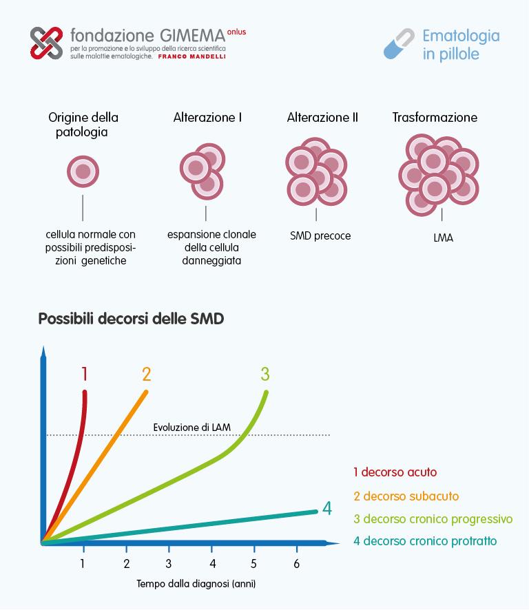 Le sindromi mielodisplastiche – Ematologia in Pillole – Fondazione GIMEMA