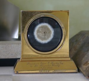 Alexander Fleming's Penicillin specimen, Alexander Fleming Laboratory and Museum, St Mary's Hospital, London (31)