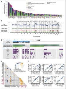 Analisi genetica dei pazienti destinati a trapianto di cellule staminali (Blood)